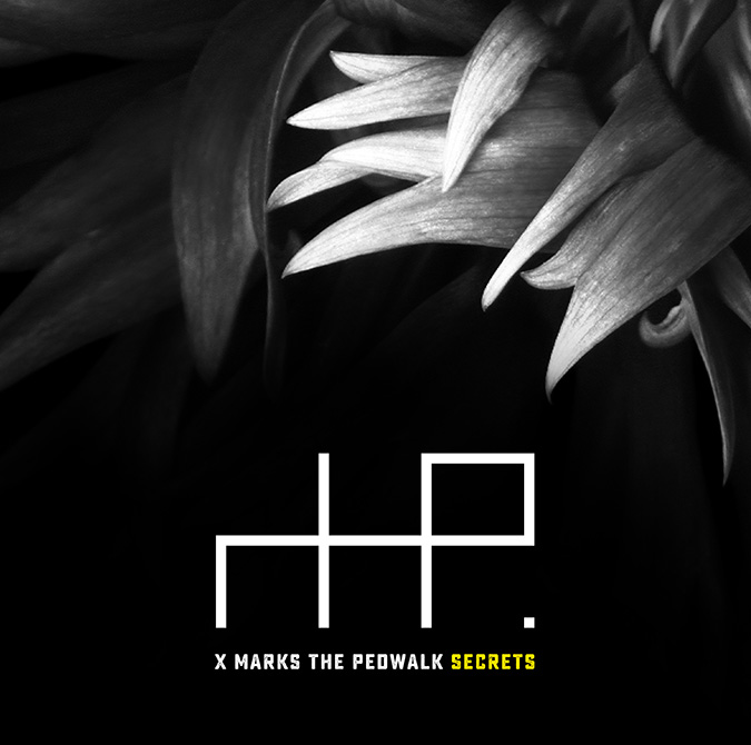 Front cover: X MARKS THE PEDWALK / Secrets / MESH1002