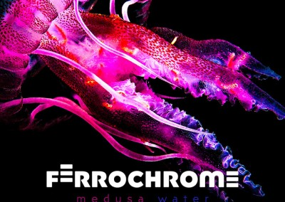 FERROCHROME | MEDUSA WATER